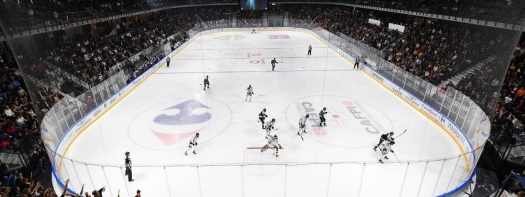 IceParc Angers - Hockey sur Glace